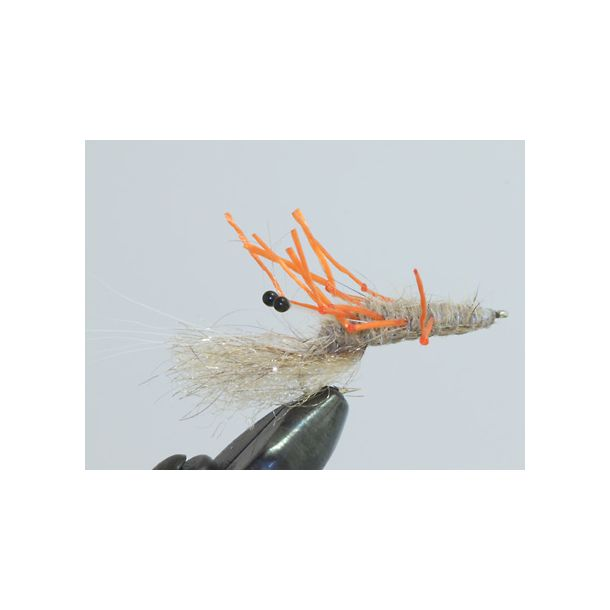 Sameo kystflue ''Honey Shrimp orange''